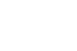No Moss Brands Client AlphaMortgage Logo
