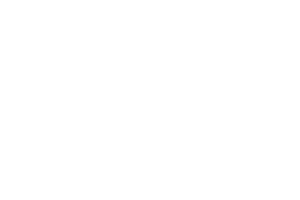No Moss Brands Client Dallas Lease Returns Logo